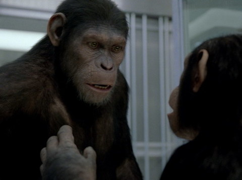 rise-of-the-planet-of-the-apes-LE194_105