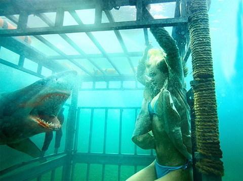 'Shark Night 3D' sẽ tràn ngập cá mập và bikini. Ảnh: Rogue.
