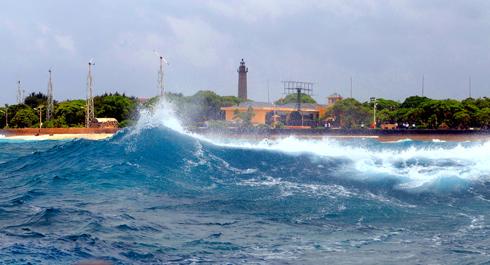 Gió cấp 8 ở đảo Song Tây Tử.