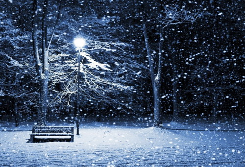 """Mỗi dịp Đông về, """"Người tình mùa đông"""" lại vang lên và sưởi ấm những trái tim băng giá. Ảnh: st."""