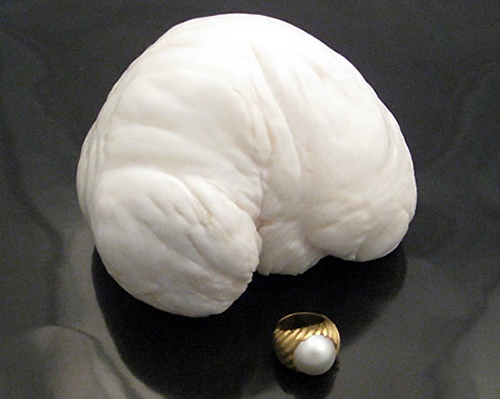 This pearl can be considered exclusive as the same is regarded to be the largest pearl ever to have existed. The pearl was discovered in Philippines in 1930 and weighs around 14 pounds. The value of this pearl as of today is $3.5 million.