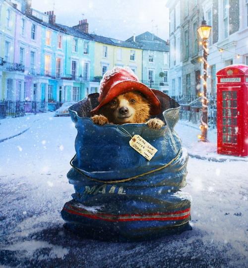 Vẻ đáng yêu của chú gấu Paddington.