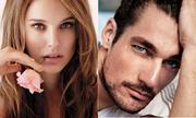Natalie Portman và David Gandy có gương mặt đẹp nhất thế giới