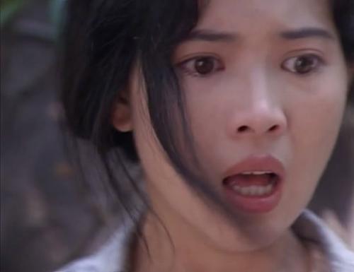 La Tuệ Linh là người phụ nữ chất phác, giàu lòng vị tha. Vì phải chịu quá nhiều đau khổ, chứng kiến quá nhiều sự mất mát nên thần kinh trở nên bất thường.