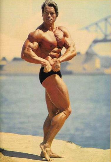 Arnold-Schwarzenegger-Ripped-5642-143616