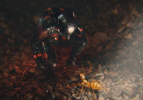 Một cảnh Người Kiến thu nhỏ cơ thể trong phim.