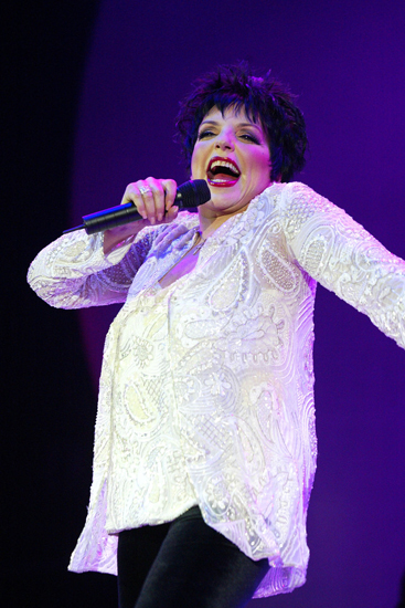 Liza Minnelli (4) Liza Minnelli, who is the famous offspring of singer/actress Judy Garland and director Vincente Minnelli has made quite a name for herself in the entertainment business. The
