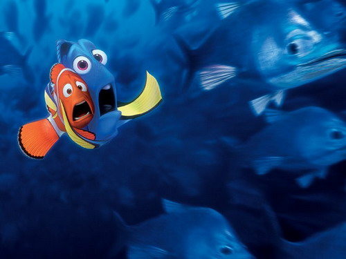 Finding-Nemo-moment-3268-1440824510.jpg