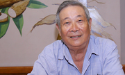 http://giaitri.vnexpress.net/tin-tuc/san-khau-my-thuat/san-khau/dao-dien-doan-ba-qua-doi-tai-my-3456648.html