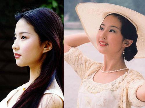 Lưu Diệc Phi nhận lời tham gia Kim phấn thế gia khi vừa tròn 15 tuổi. Gương mặt bầu bĩnh cùng đường nét thanh tú của Lưu Diệc Phi tạo nhiều cảm xúc cho người xem.