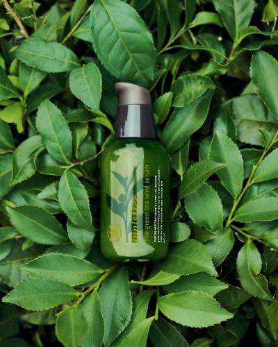 Innisfree – mỹ phẩm thiên nhiên Hàn Quốc có mặt tại Việt Nam