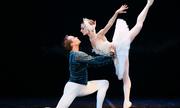 http://giaitri.vnexpress.net/tin-tuc/san-khau-my-thuat/san-khau/ballet-ho-thien-nga-ban-het-ve-truoc-ngay-dien-o-tp-hcm-3506522.html