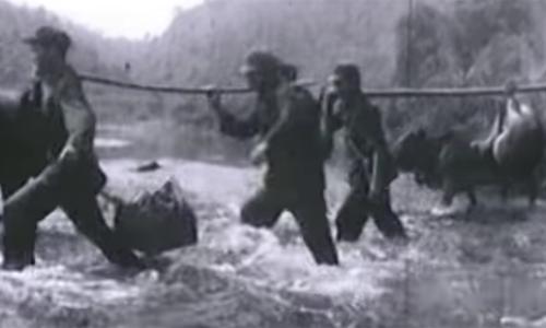 Các phim điện ảnh lấy cảm hứng từ chiến tranh biên giới 1979 - ảnh 4