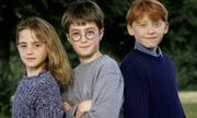 Dàn sao 'Harry Potter' - người thành danh, kẻ nghiện rượu, ngồi tù