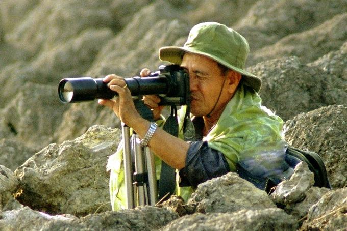 'Theo cánh hạc bay' - sách ảnh về đàn sếu đầu đỏ ở Kiên Giang