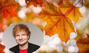 autumn-leaves-kiep-nguoi-nhu-la-thu