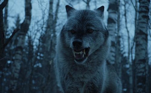 Fan dự đoán mùa cuối Game of Thrones - ảnh 9