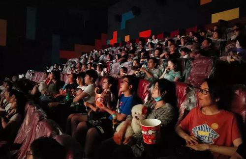 100 chú chó cùng chủ đến rạp xem phim ở Trung Quốc - ảnh 1