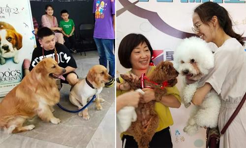 100 chú chó cùng chủ đến rạp xem phim ở Trung Quốc - ảnh 2
