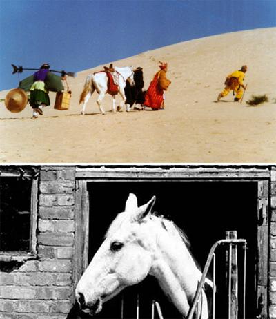 Đời phong ba của chú ngựa phim Tây du ký - ảnh 5
