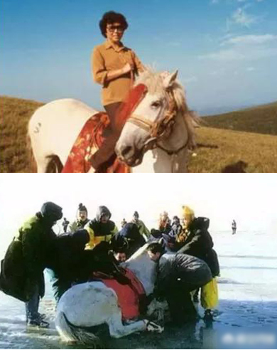 Đời phong ba của chú ngựa phim Tây du ký - ảnh 3