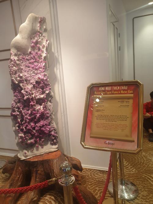 Lương Thùy Linh giới thiệu 6 bảo vật kỷ lục của DOJI - ảnh 5