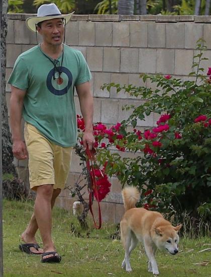 Daniel Dae Kim dắt chó đi dạo sau khi khỏi bệnh. Ảnh: Backgrid.
